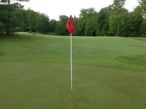 golfpin