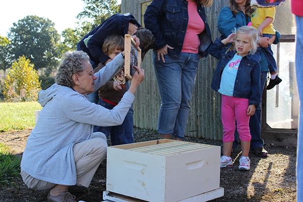Young visitors attend a public program about bees at Parky's Farm