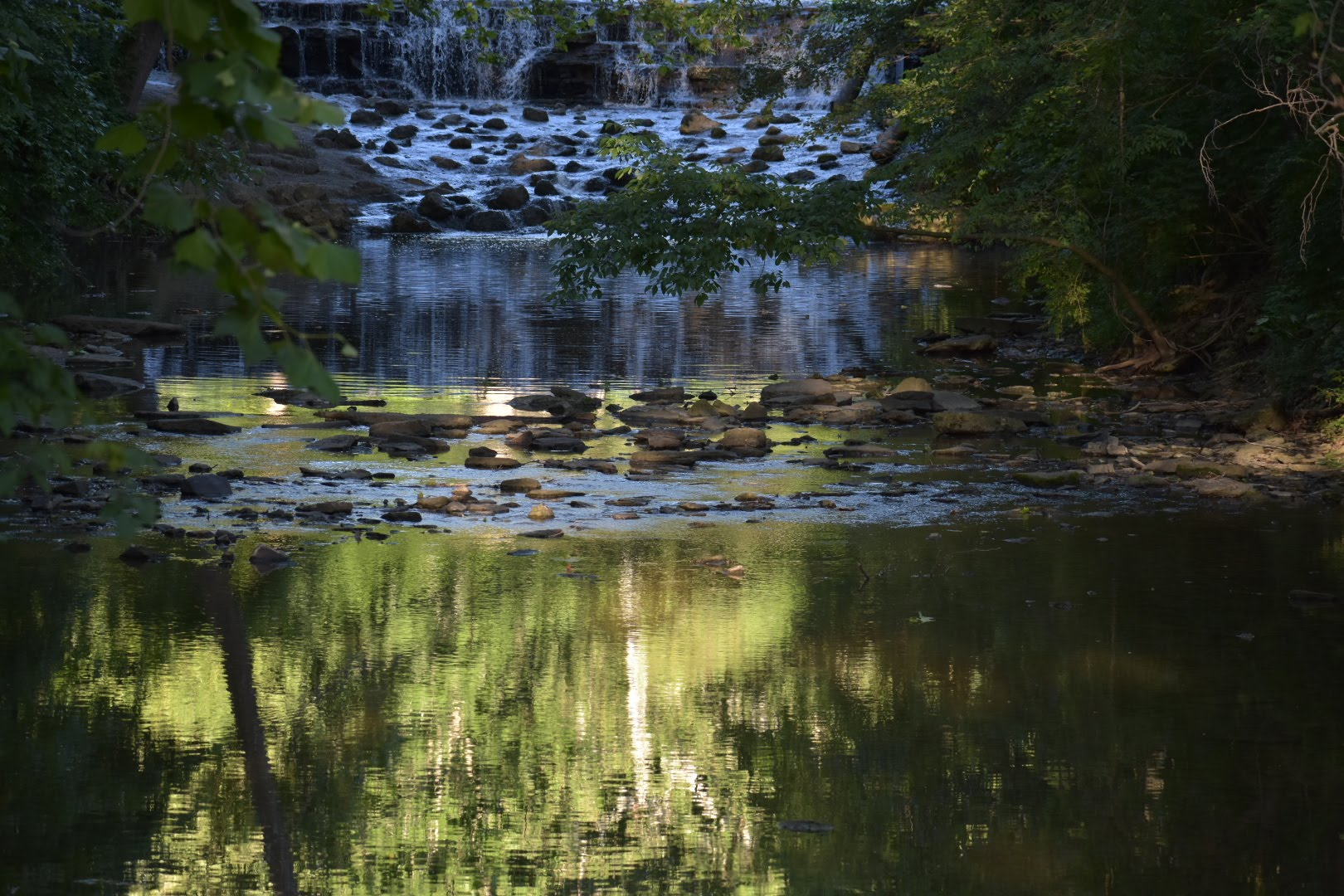 Through the leaves, the creek at Sharon Woods gives way to Buckeye Falls in the background.