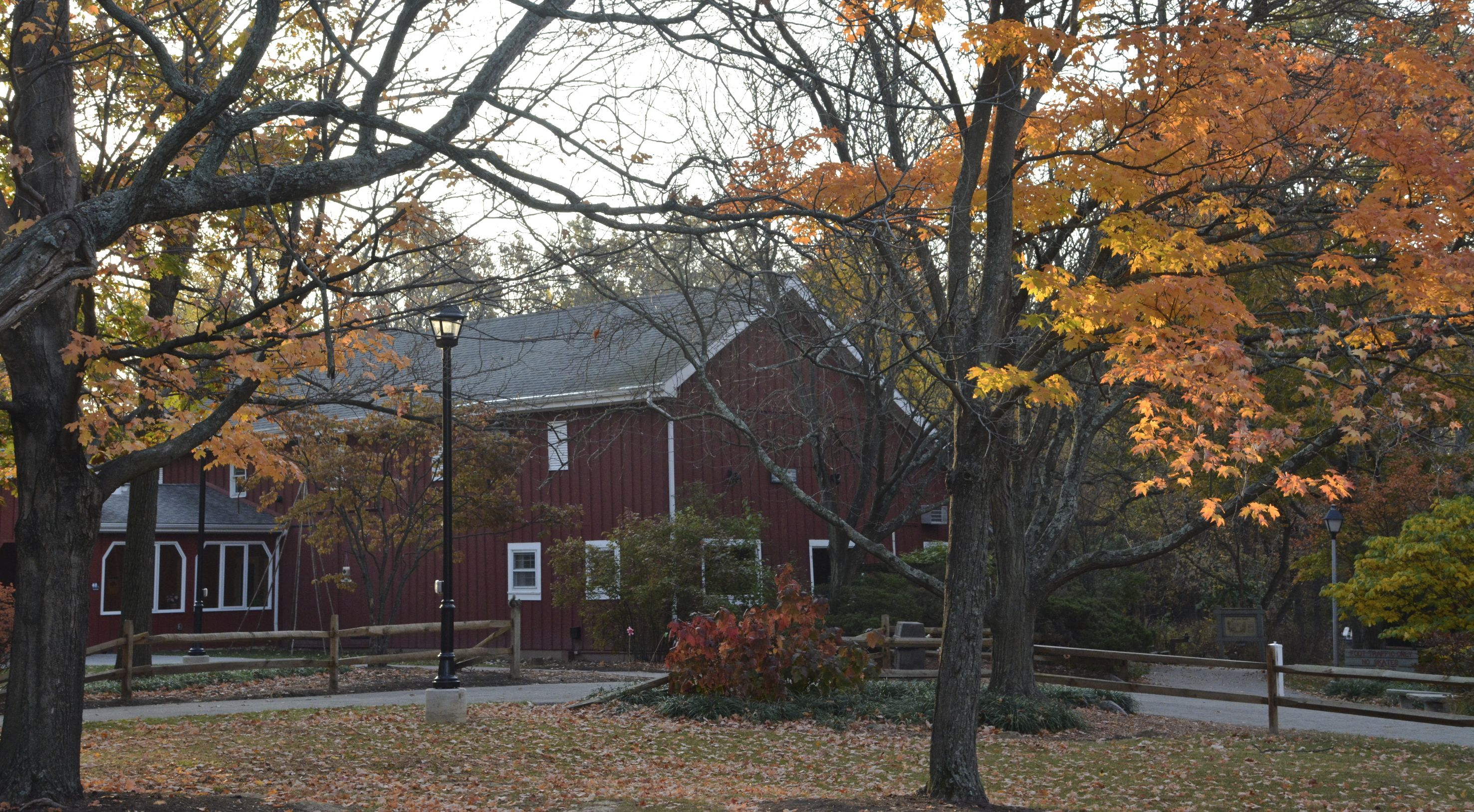 A sunny fall day shows off the red Ellenwood Nature Barn at Farbach-Werner Nature Preserve. Trees with orange leaves surround the barn. Leaves also are smattered across the ground.
