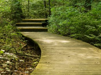 The walkway of the Tallgrass Prairie Trail at Miami Whitewater Forest.