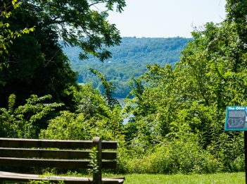 A bench overlooks lush greenery and the Ohio River at Withrow Nature Preserve.