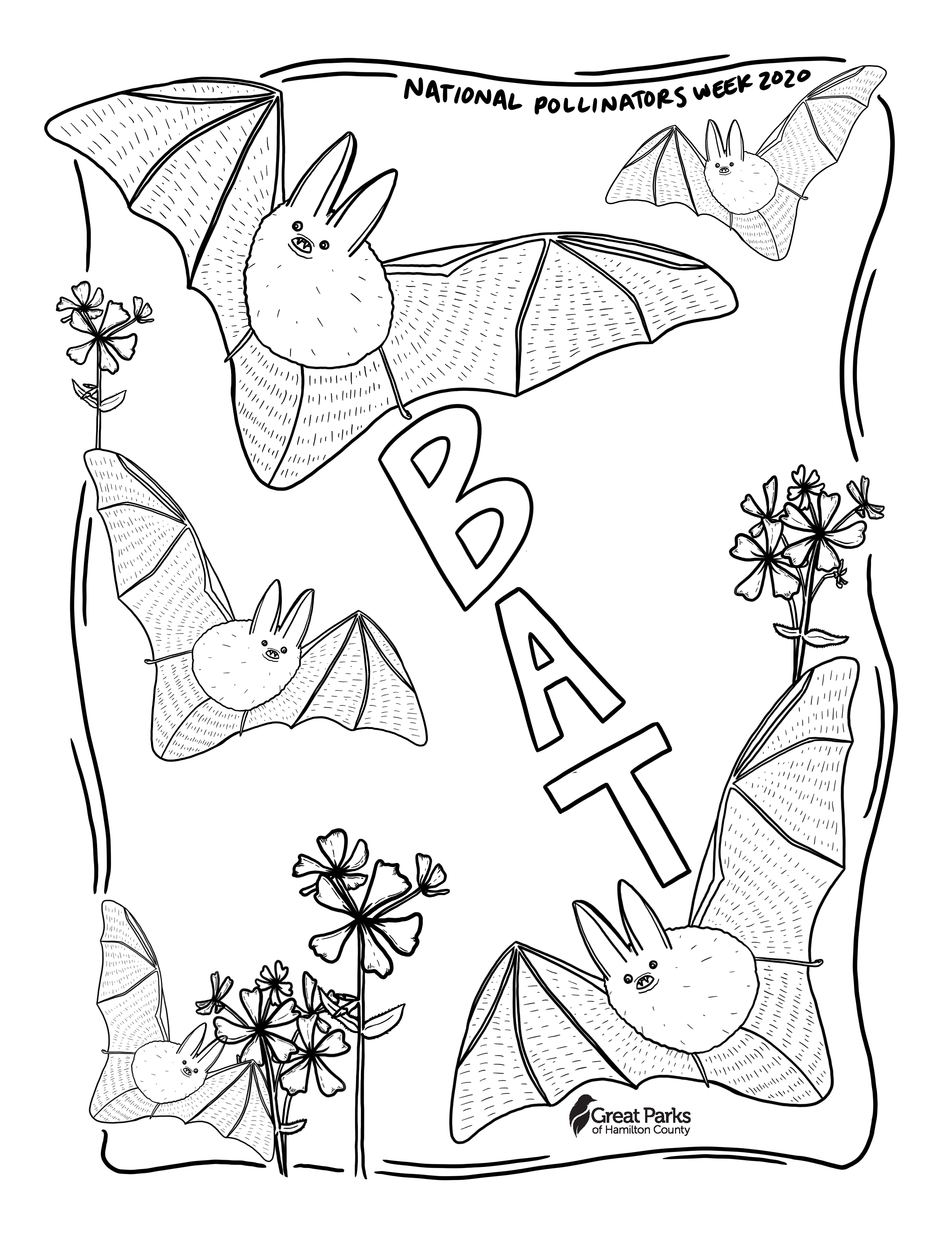 A drawing of bats for National Pollinators Week 2020.