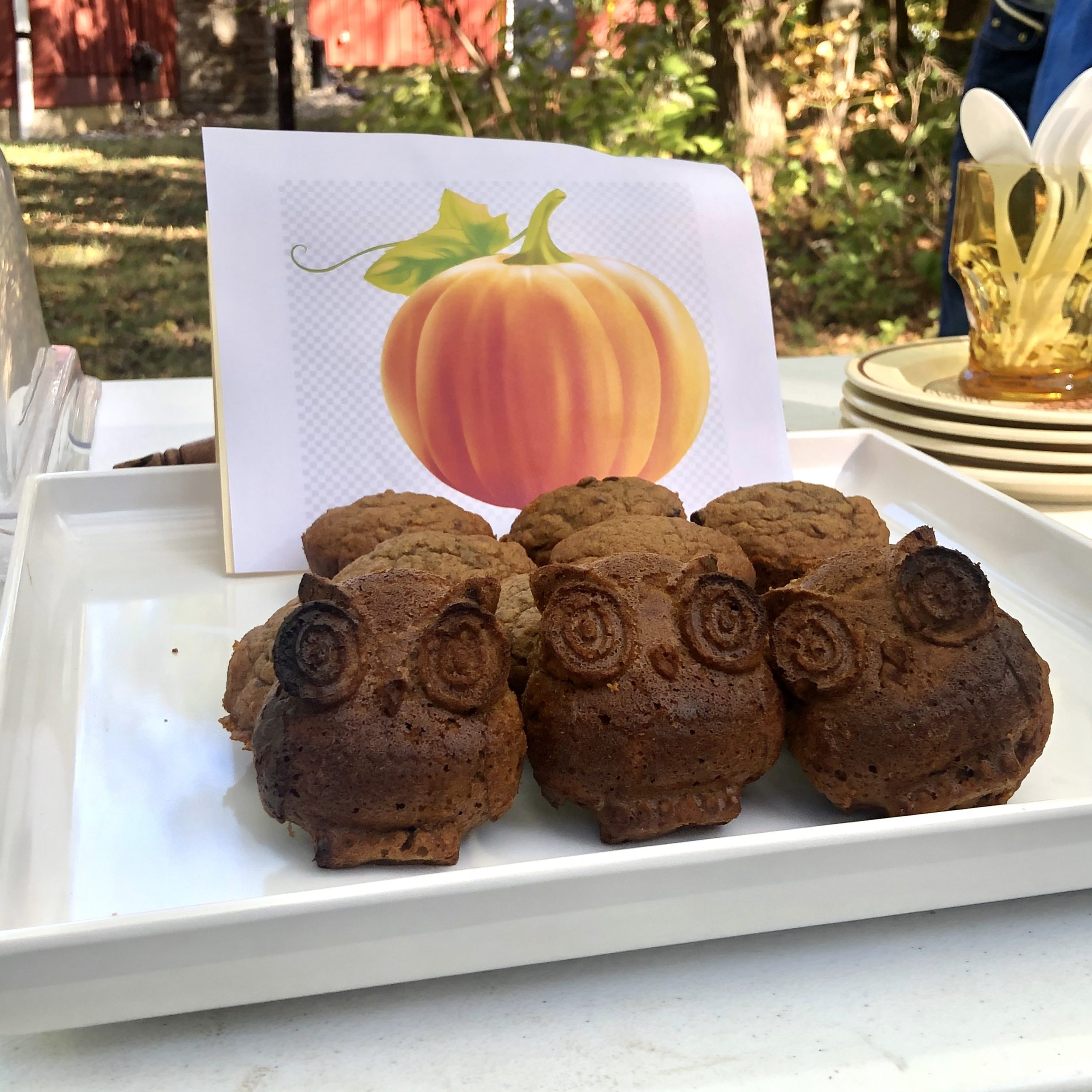 Black walnut pumpkin muffins