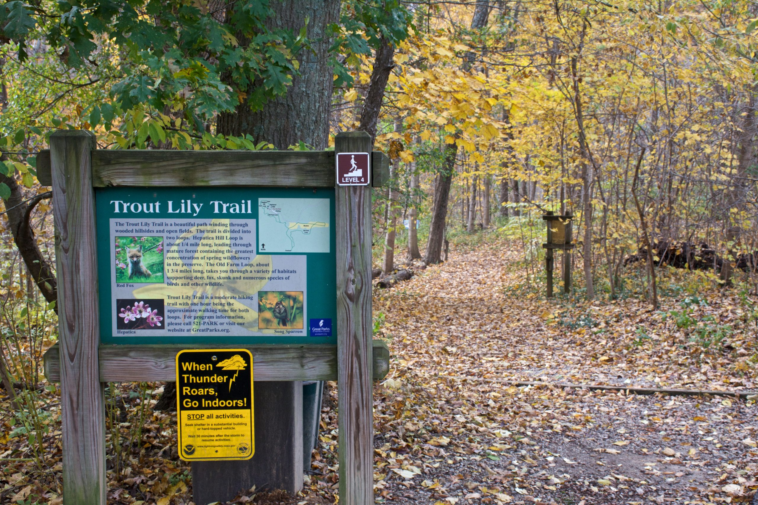 The trailhead to the Trout Lily Trail gives way for a canopy of colorful fall foliage.