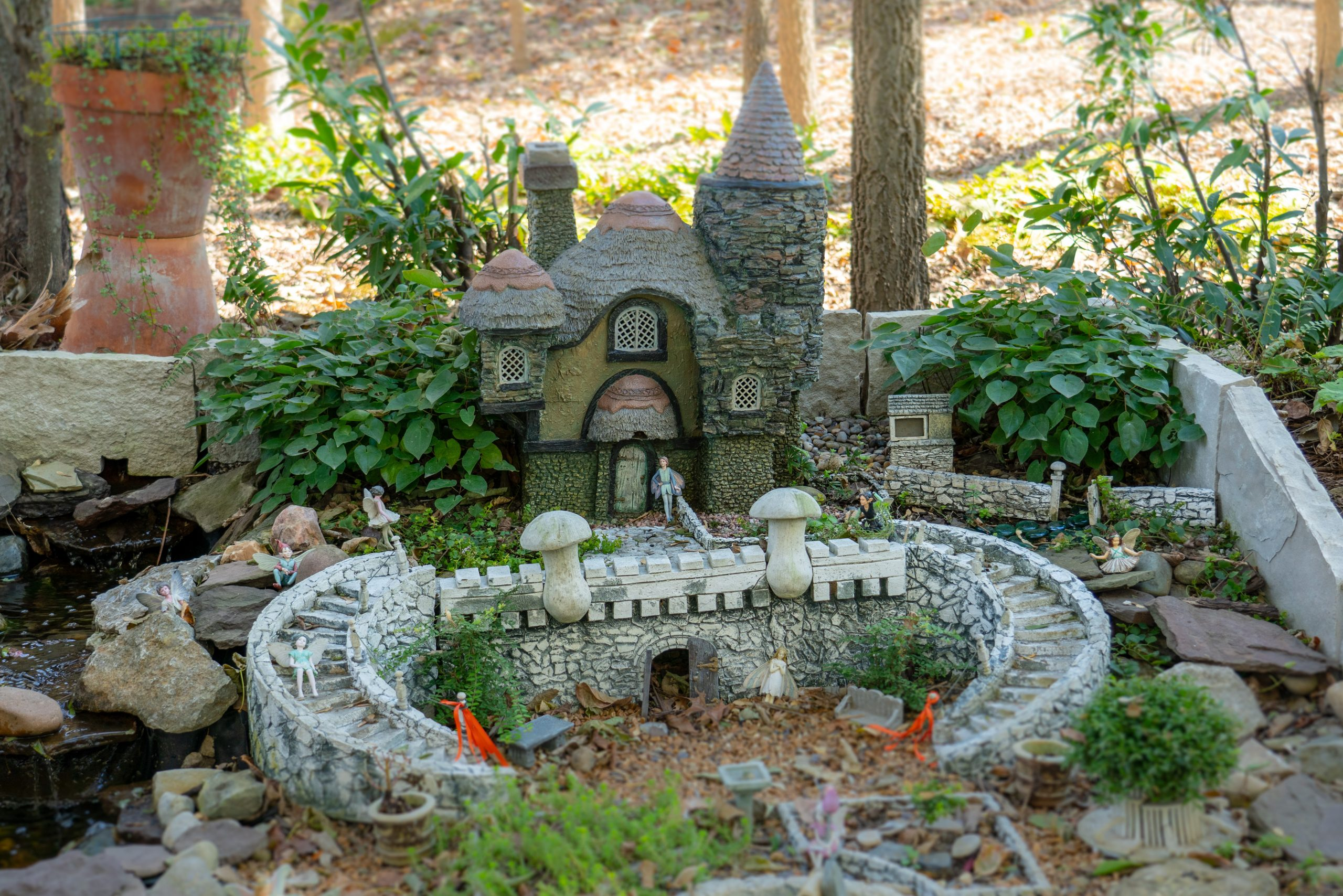 A fairy garden sits among the trees in Highfield Discovery Garden.